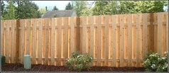6ft_cedar_good_neighbor_2