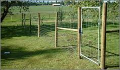 deer_fence_3